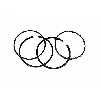 Virzuļu gredzeņu komplekts 13 HP Mājai / Dārzam