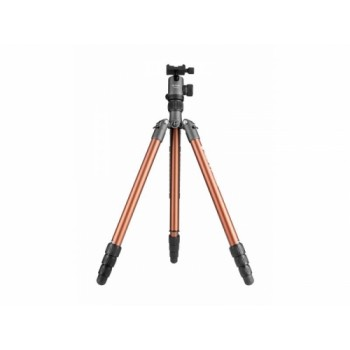 Tripod Fotopro X-go Chameleon with FPH-52Q ball head - gray-brown
